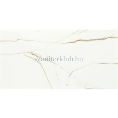 arte floris white csempe 30,8x60,8 cm